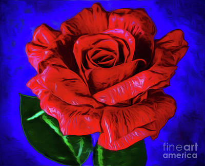 Photograph - Rose 12618-1 by Ray Shrewsberry