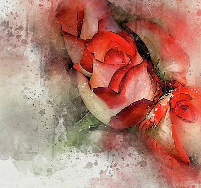 Photograph - Rose 6 by Peggy Cooper
