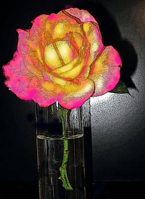 Digital Art - Rose And Shadows by Ian  MacDonald