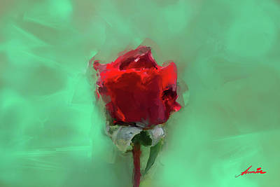 Alga Mixed Media - Rose by Armin Sabanovic