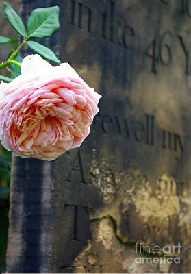 Photograph - Rose At The Grave by John S