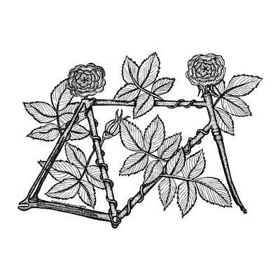 Bike Drawing - Rose Bicycle by Karl Addison