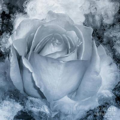 Rosaceae Mixed Media - Rose Black White Monotone by Mona Stut