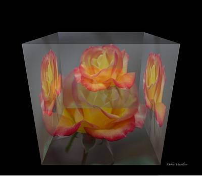 Photograph - Rose Block by Debra     Vatalaro