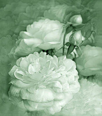 Photograph - Rose Bouquet Flowers Mint Green by Jennie Marie Schell