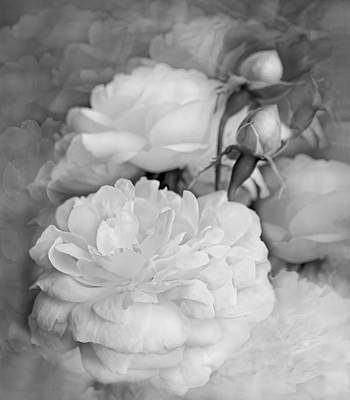 Photograph - Rose Bouquet Flowers Soft Gray by Jennie Marie Schell