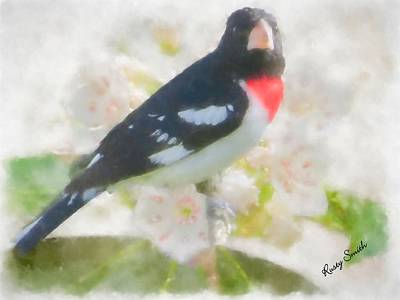Digital Art - Rose Breasted Grosbeak And Mountain Laurel by Rusty R Smith