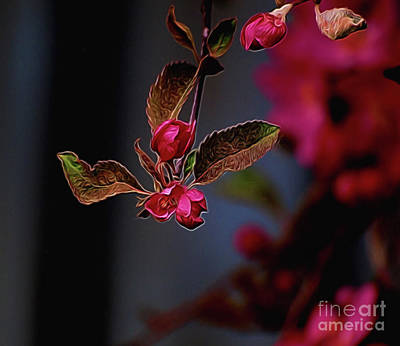 Photograph - Rose Bud by Vivian Martin