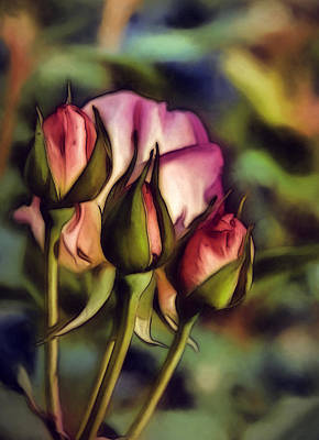 Color Photograph - Rose Buds by John K Woodruff