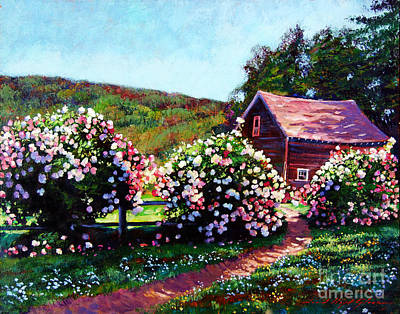 Rose Bushes Art Print