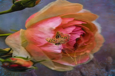Rose Buttefly Art Print