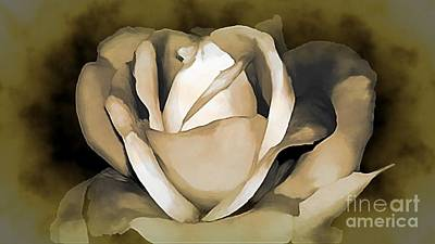 Photograph - Rose by Catherine Hill