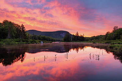 Photograph - Rose Colored Pond by Michael Blanchette