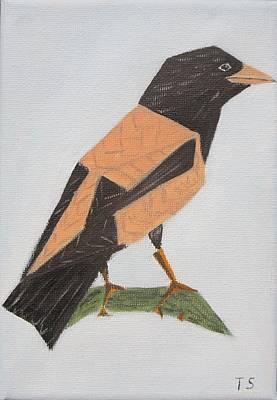 Rose-coloured Starling Art Print