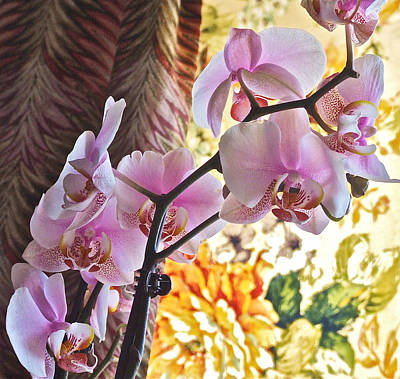 Photograph - Rose Cottage Orchid by Janis Nussbaum Senungetuk