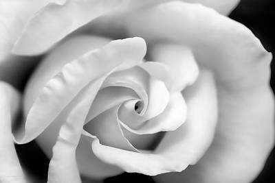 Photograph - Rose Flower Black And White Monochrome by Jennie Marie Schell