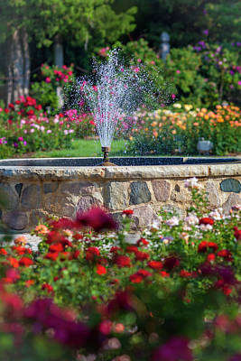 Photograph - Rose Fountain by Mark Mille