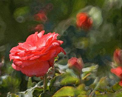 Photograph - Rose Garden by Ernie Echols