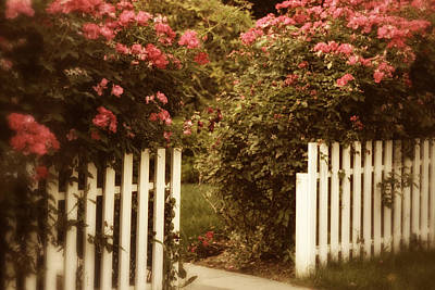 Picket Fence Flowers Photograph - Rose Garden Gateway by Jessica Jenney