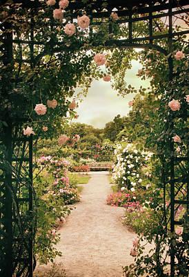 Photograph - Rose Garden Grace by Jessica Jenney