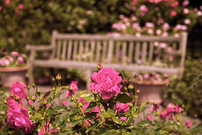 Rose Garden Rest Art Print by Jessica Jenney