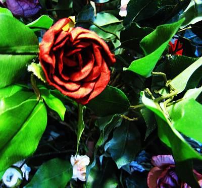 Rose Art Print by HollyWood Creation By linda zanini