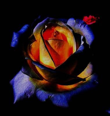 Rose II Art Print by Mohammed Nasir