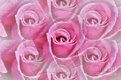 Photograph - Rose Illusion by Debby Pueschel