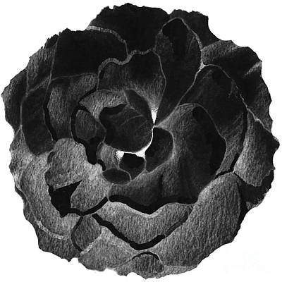 Mixed Media - Rose In Black by Helena Tiainen
