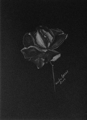 Roses Painting - Rose In Bloom by Alexis Grone