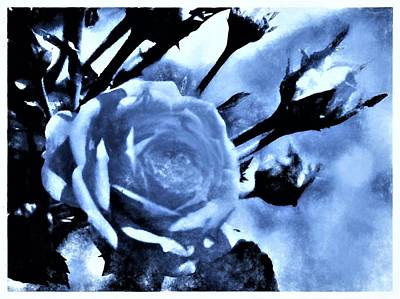 Charcoal Mixed Media - Rose In Charcoal Photography by Debra Lynch