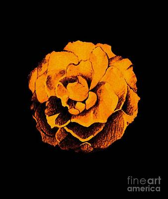 Digital Art - Rose In Orange On Black by Helena Tiainen