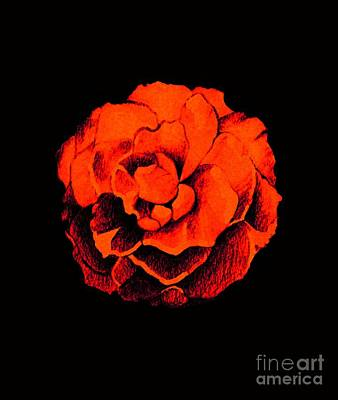 Digital Art - Rose In Red On Black by Helena Tiainen