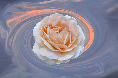 Photograph - Rose In Swirl by Helen Haw