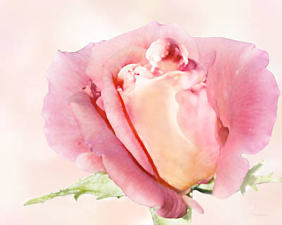 Digital Art - Rose Kiss by Francesa Miller