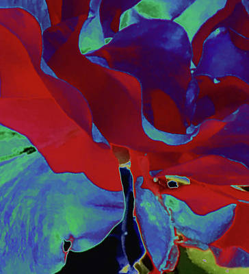 Mixed Media Royalty Free Images - Rose - Liquid Dreams 2 Royalty-Free Image by Monique Neugebauer