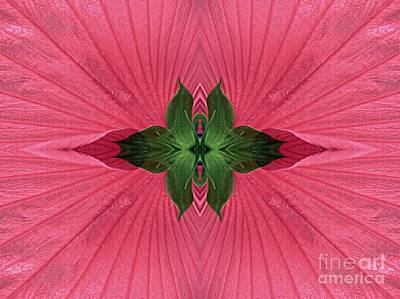 Abstract Digital Digital Art - Rose Mallow Composition by Sarah Loft