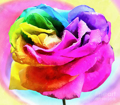 Rainbow Rose Photograph - Rose Of Peace by Krissy Katsimbras