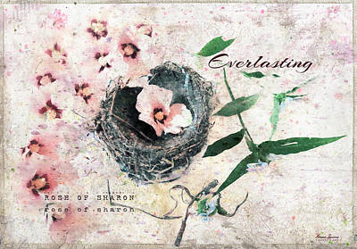 Photograph - Rose Of Sharon Everlasting by Anna Louise