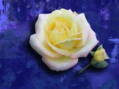 Rose On Blue Art Print by Morgan Rex