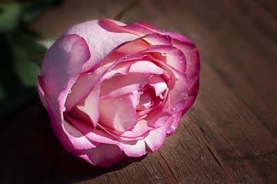 Digital Art - Rose On Wood by Dick Pratt