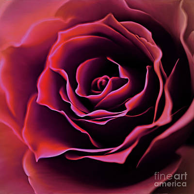 Rose Painting 04356 Original by Gull G