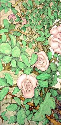 Rose Panel No 1 Art Print by Edward Ruth