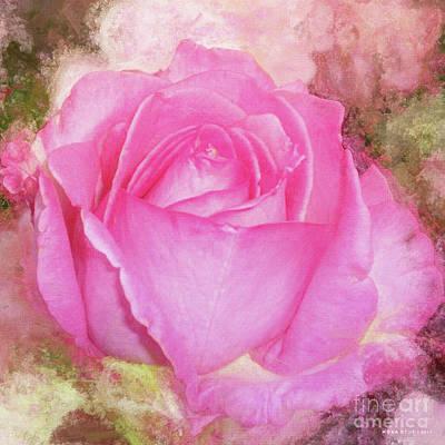 Rose Pastel Soft Sorbet 1 Art Print