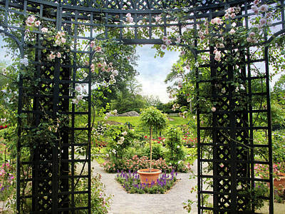 Greenery Digital Art - Rose Pergola Views by Jessica Jenney