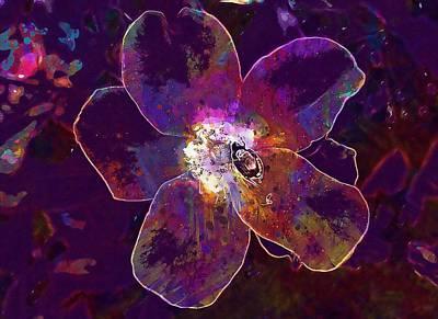 Knockout Roses Digital Art - Rose Red Knockout Knockout Rose  by PixBreak Art