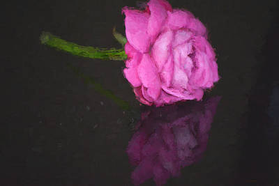 Painting - Rose Reflected by Cathy Jourdan