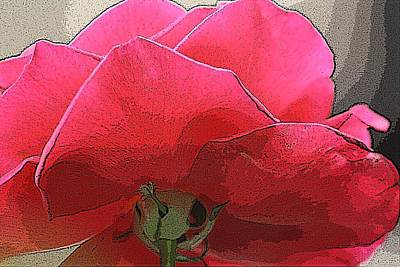 Photograph - Rose Reverse by Donna G Smith