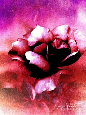Mixed Media Royalty Free Images - Rose Rose  copyright Mary Lee Parker  Royalty-Free Image by MaryLee Parker