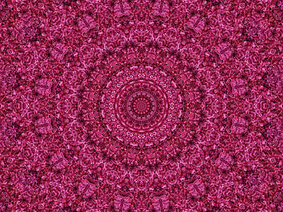 Digital Art - Rose Ruffles Mandala by Lynne Guimond Sabean